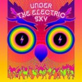 Movie Review: UNDER THE ELECTRIC SKY,  A 3D Documentary Event