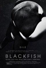 blackfishposterart