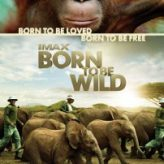 Born to Be Wild — Documentary Retroview (2011)