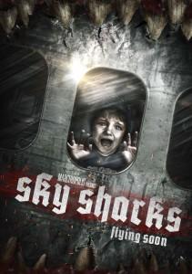 sky shocks